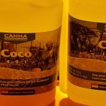 Canna Coco Feed Schedule: Canna Coco A & B Feed Chart and Grow Guide