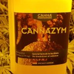 How much Canna Cannazym should be used to grow marijuana in coco coir?