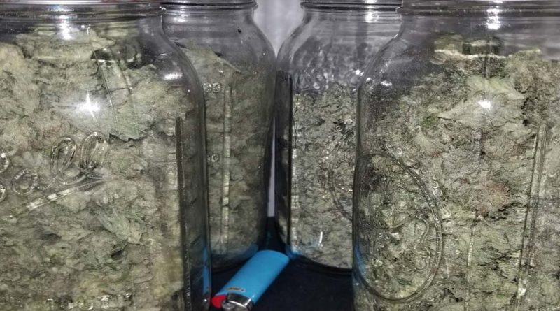 The ideal humidity for curing buds is 60-65%